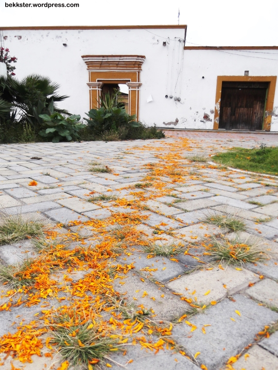 The entrance. Over the weekend, many houses throughout Puebla had these cempasúchil (marigold) trails, which invite the spirits to come to the altars set up for them.