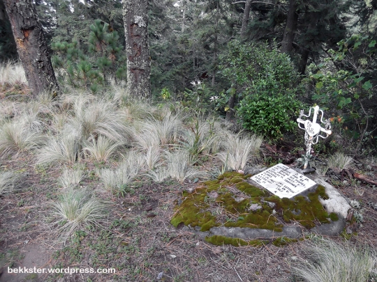 "Apparently ""Tío Pollo"" was put to rest here, on a slope overlooking a stream that we could hear, but not see."