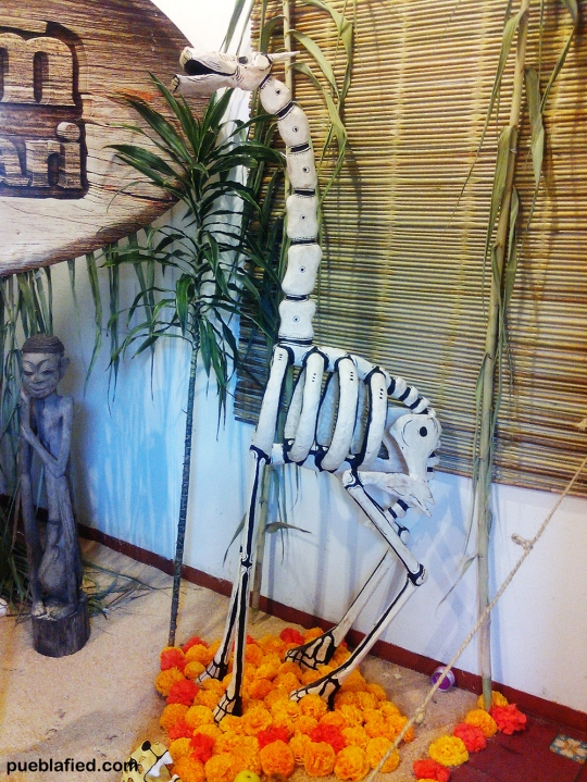 It's unusual to see a skeletal giraffe (!), but this ofrenda was more of an ad for Africam Safari, an open-air zoo outside Puebla.